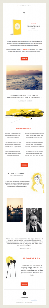 book-launch-email template sample