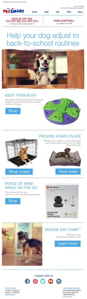 doggie-daycare-tips-back-to-school-email