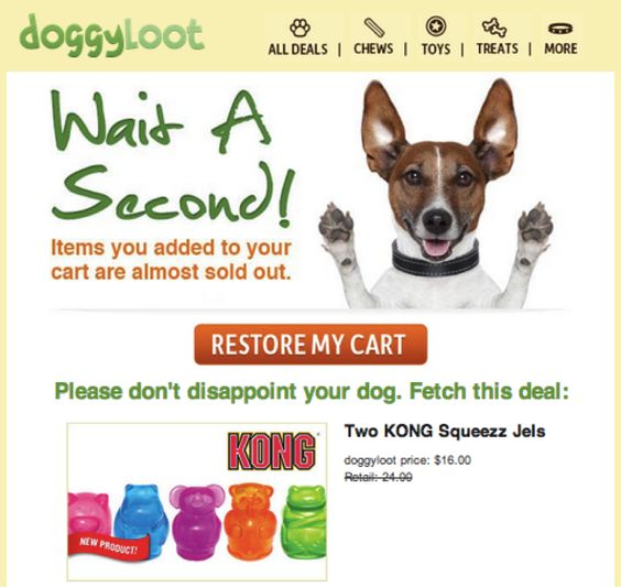 Dogyloot funny abandoned cart email example
