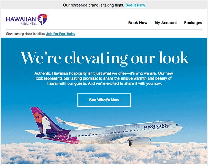Hero section/unit design- best practices example from Hawaiian Airlines