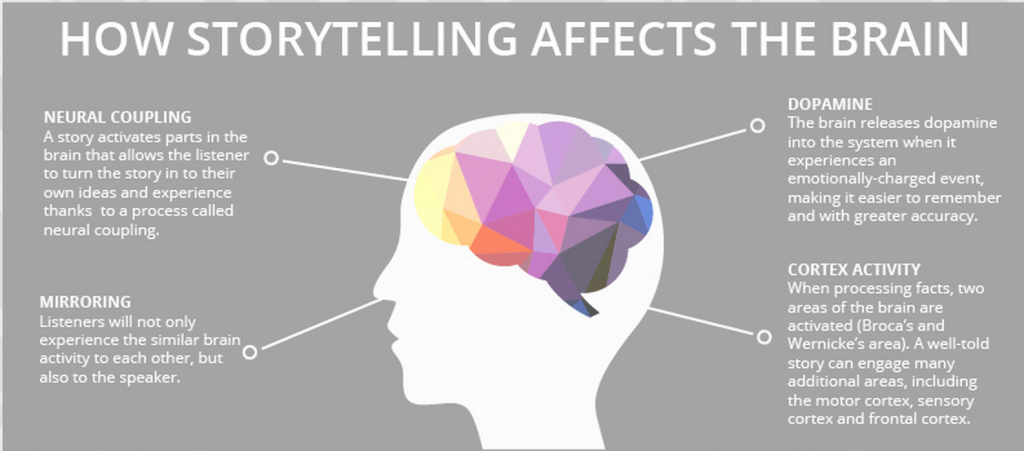 illustration of how storytelling effects the brain