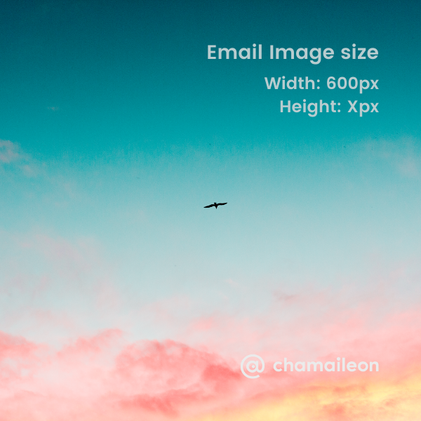 email image size 600px